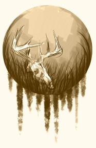 Campagno, Caitlin. White Tail Study. 2017. Adobe Photoshop